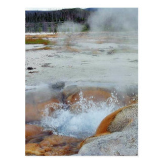 Geysers Steam Boiling Yellowstone Postcards