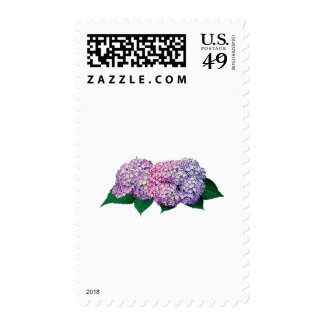 Gft_Pink and Lavender Hydrangea Postage