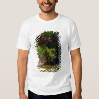 Ghana: Wli Falls, a.k.a. Agumatsa Falls (Volta T-Shirt