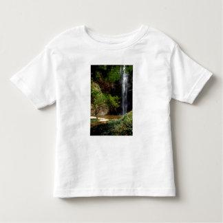 Ghana: Wli Falls, a.k.a. Agumatsa Falls (Volta Toddler T-shirt