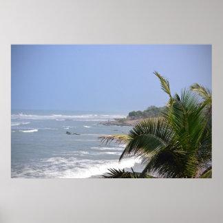 Ghanaian Coastal Palm Poster