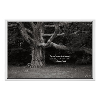 Ghandi Quote Poster, Perley Oak Monochrome