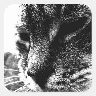 Ghost Cat Square Sticker