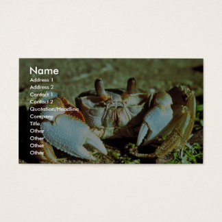 Ghost Crab Business Card
