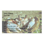 Ghost Crab Business Card Templates