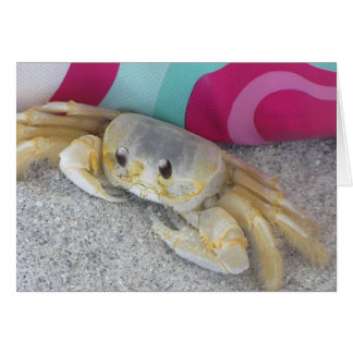 Ghost Crab Cards