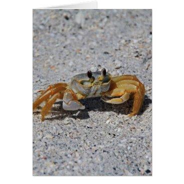 Beach Themed Ghost Crab Card