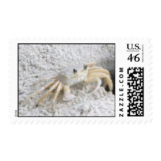 Ghost Crab Postage Stamps