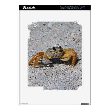Beach Themed Ghost Crab Skin For iPad 3