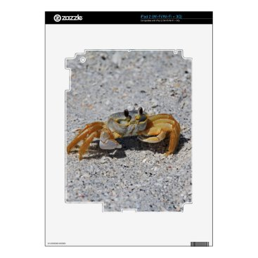 Beach Themed Ghost Crab Skins For iPad 2