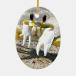 Ghost Crab Surprise Christmas Ornament