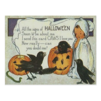 Ghost Crow Jack O Lantern Pumpkin Black Cat Postcard