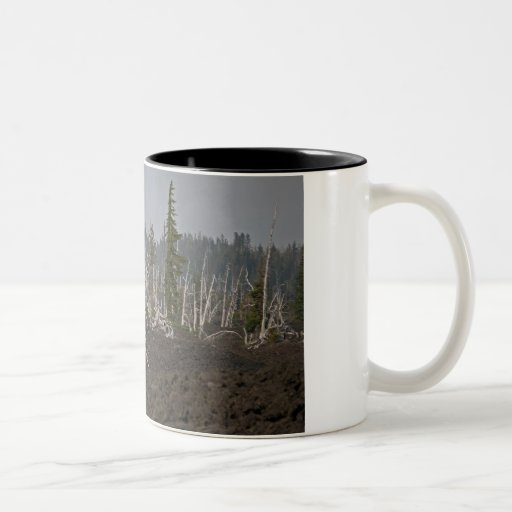 Ghost Forest in Lava, Old McKenzie Hwy Coffee Mug