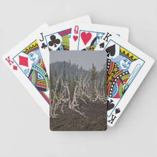 Ghost Forest in Lava, Old McKenzie Hwy Deck Of Cards