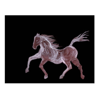 Ghost Horse Postcard