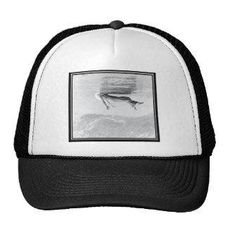 Ghost Image Mesh Hat