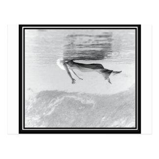 Ghost Image Postcard