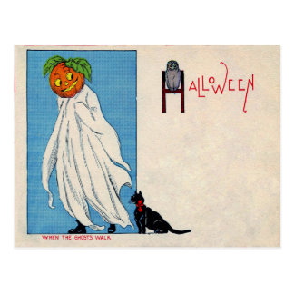 Ghost Jack O Lantern Black cat Owl Spirit Postcard