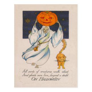 Ghost Jack O' Lantern Pumpkin Cat Costume Postcard