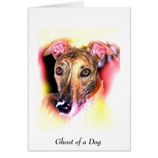 GHOST OF A DOG CARD