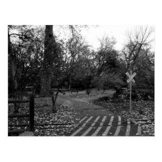 """ghost train"" postcard"