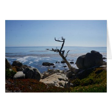 everydaylifesf Ghost Tree - Scenic 17 Mile Drive Greeting Card