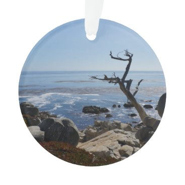 Beach Themed Ghost Tree – Scenic 17 Mile Drive Ornament