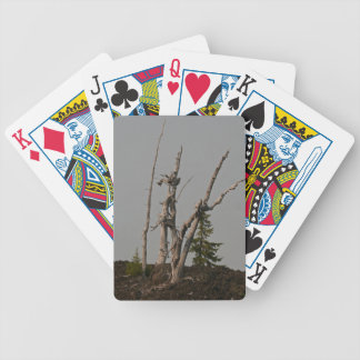 Ghost Trees, McKenzie Pass, Oregon Bicycle Playing Cards