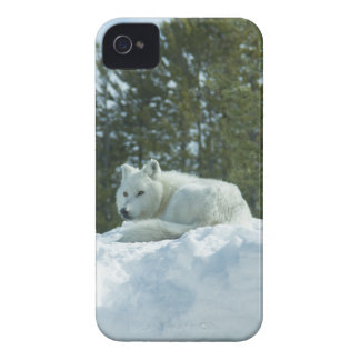 Ghost Wolf iPhone 4 Case-Mate Case