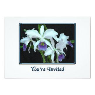Ghostly Cattleyas Card