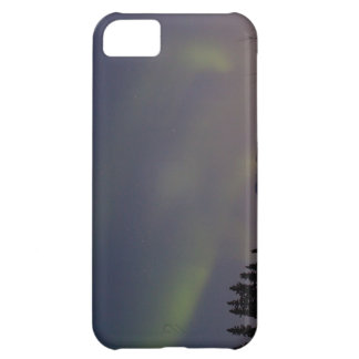 Ghostly Glow iPhone 5C Cases