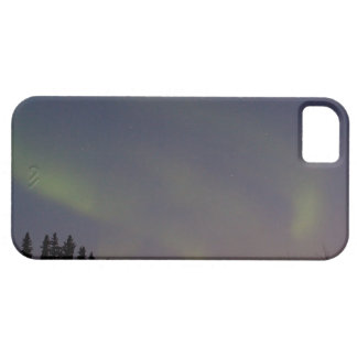 Ghostly Glow iPhone 5 Cases