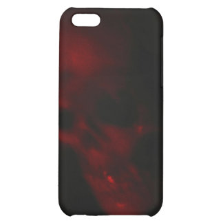 Ghostly Skull iPhone 5C Cover