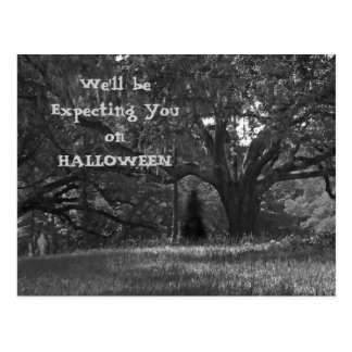 Ghostly Trees Halloween Invitation Postcard 2