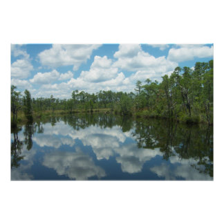 Giant 6ftx4ft-Southern Ms. River Swamp Posters