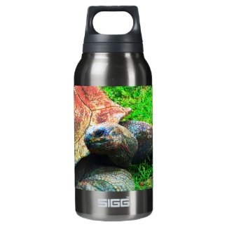 Giant Aldabra Tortoise Grunge, Kansas City Zoo Insulated Water Bottle
