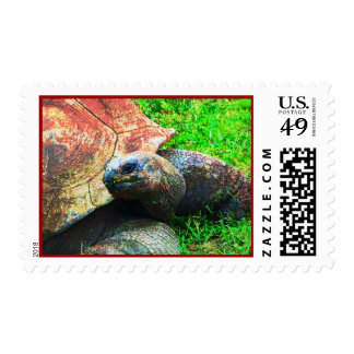 Giant Aldabra Tortoise Grunge, Kansas City Zoo Postage