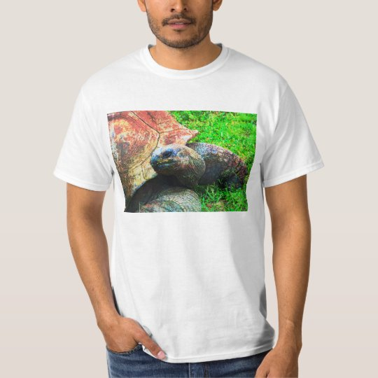 Giant Aldabra Tortoise Grunge, Kansas City Zoo T-Shirt