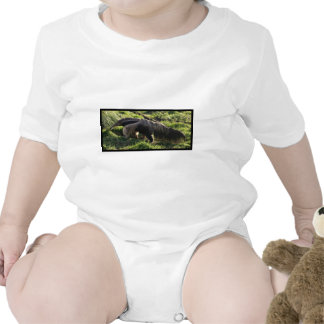 Giant Anteater Baby T-Shirt