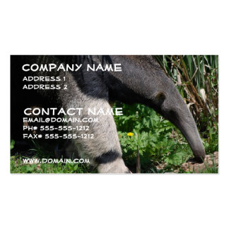 Giant Anteater Business Card