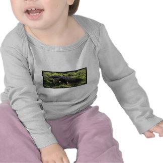 Giant Anteater Infant T Shirt