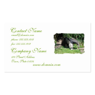 Giant Anteater Looking for Ants Business Cards