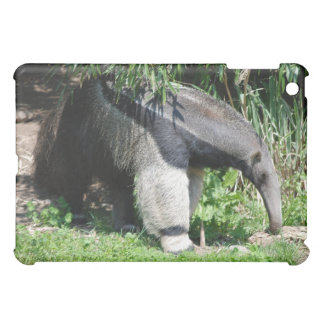 Giant Anteater Looking for Ants iPad Case