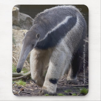 Giant Anteater Mousemat Mouse Pad