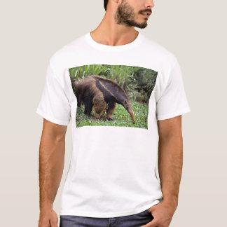 Giant anteater (Myrmecophaga tridactyla) T-Shirt