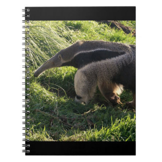 Giant Anteater Notebook