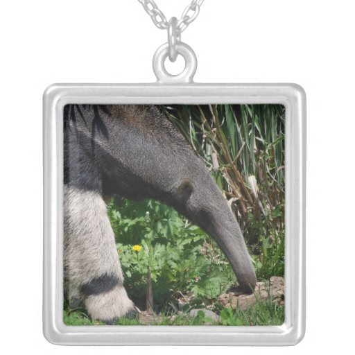 Giant Anteater Photo Necklace