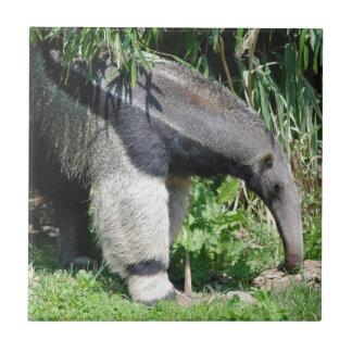 Giant Anteater Tile