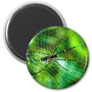 Giant Argiope Spider 2 Inch Round Magnet