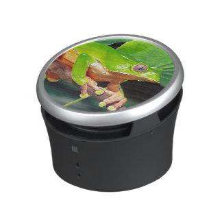 Giant Bicolor Monkey Treefrog, Phyllomedusa Bluetooth Speaker